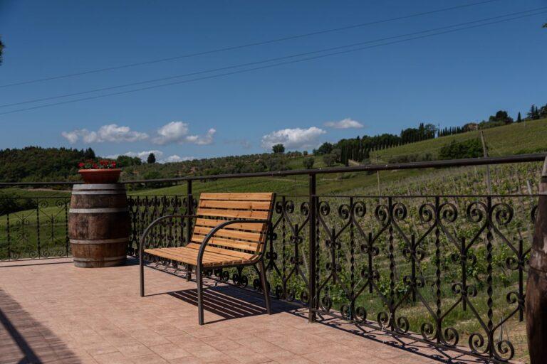 degustazione vini azienda concadoro castellina in chianti (10)_29