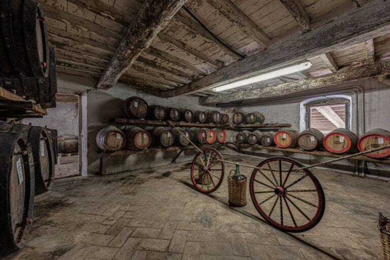 degustazione vini azienda concadoro castellina in chianti (1)_38
