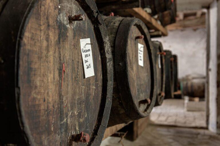 degustazione vini azienda concadoro castellina in chianti (2)_37