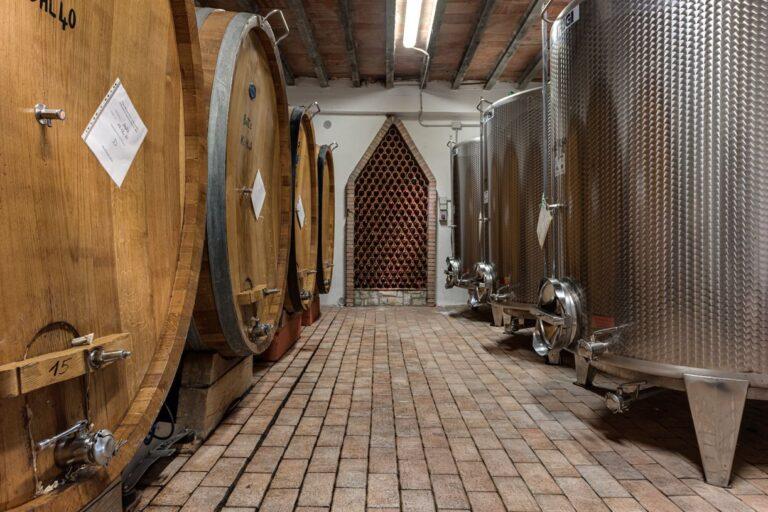 degustazione vini azienda concadoro castellina in chianti (30)_9