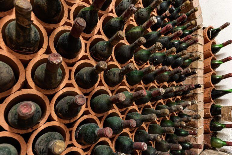 degustazione vini azienda concadoro castellina in chianti (35)_4