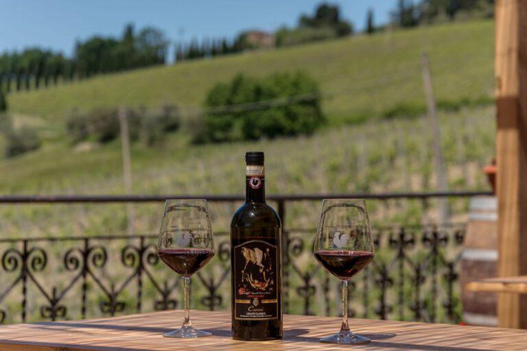 degustazione vini azienda concadoro castellina in chianti (8)_31